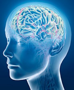 brain injury lawyers in Orange County