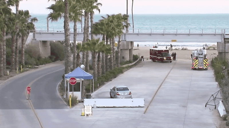 Single Mom Fighting for Her Life after Shark Attack in San Onofre