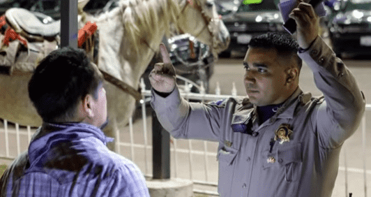 Man Arrested for Driving Under the Influence After Riding a Horse on the Freeway
