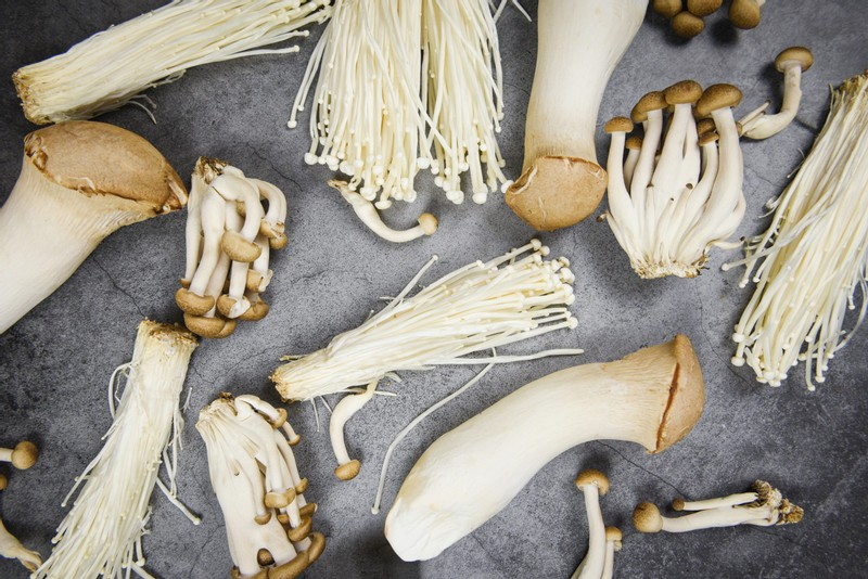 Four Dead, 30 Hospitalized After Listera Outbreak Linked to Enoki Mushrooms