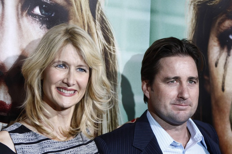 Actor Luke Wilson Hailed as a Hero After Rescuing Woman During Los Angeles Car Crash